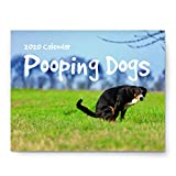Pooping Dogs Calendar - 2020 Wall Calendar - Large 11' x 17' When Open - Funny Gag Gift for Dog Lovers - Joke Present with Beautiful Photos of Dogs Pooping