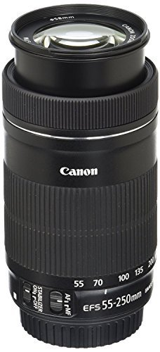 Canon EF-S 55-250mm F4-5.6 is STM Lens for Canon SLR Cameras (Renewed)