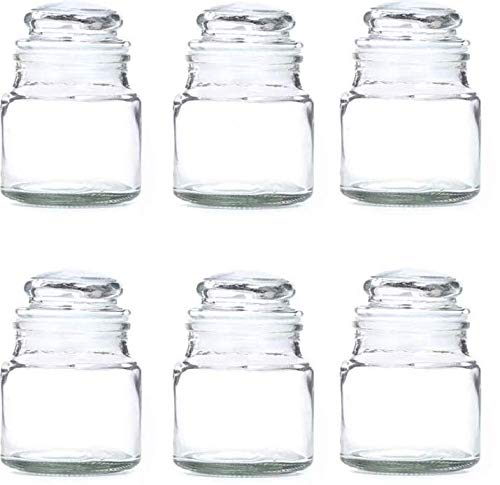 41WnwPjY rL - DINEMART Glass Dry Fruit and Honey Glass Spice Jar Container for Storage with Air Tight Lid Glass Cap (100ml, Clear) Set of 6 Pieces