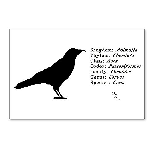 CafePress - Crow - Postcards (Package of 8), 6'x4' Glossy Print Note Card