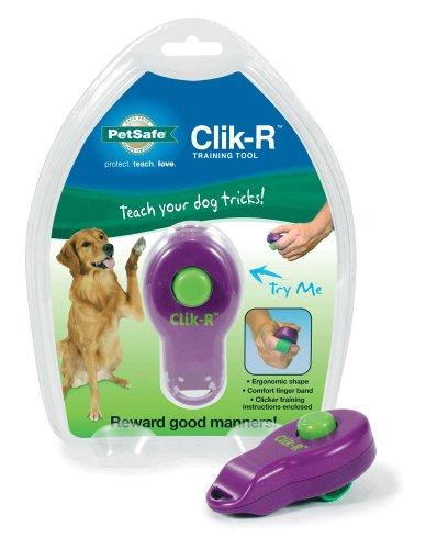 PetSafe Clik-R Trainer 1