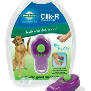 PetSafe Clik-R Trainer