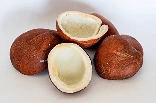 Dry Coconut Fights Against Anaemia-Telugu Food And Health News