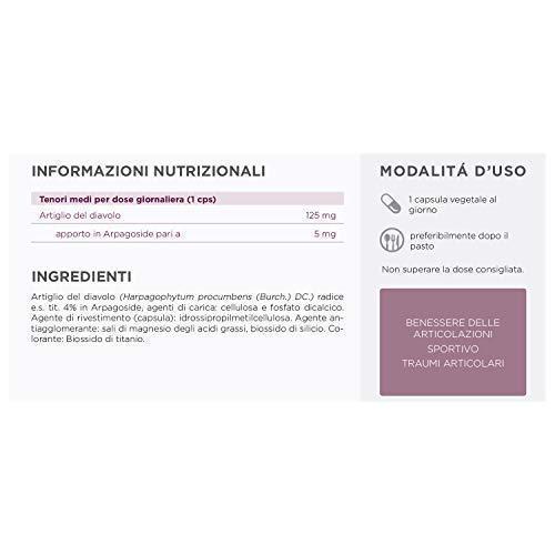 Artiglio Del Diavolo Forte Integratore Articolazioni Compresse Cartilagine Dolori Articolari Antinfiammatorio Muscolare…
