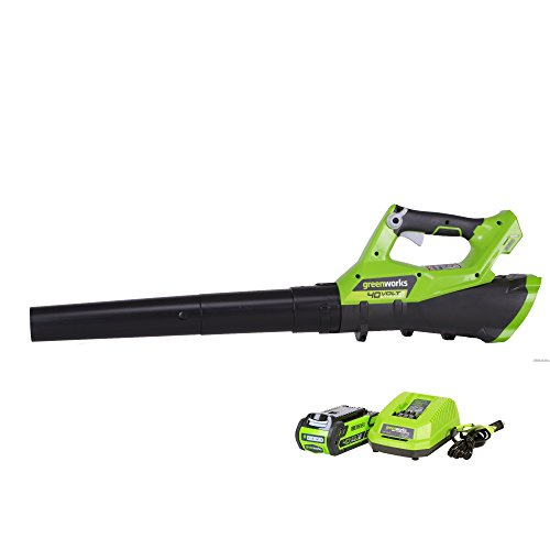 Greenworks 40V 110 MPH - 390 CFM Cordless Jet Blower, 2.0 AH Battery Included 2400802