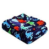 Summertime Whimsy Plush Fleece Throw Blanket (50' x 60') - Dino Time