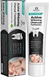 Dental Expert Activated Charcoal Teeth Whitening Toothpaste - Mint Flavor - (0.7 fl oz)