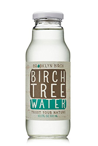 Brooklyn Birch Company Birch Water, 12 Fl Oz (Pack of 6)