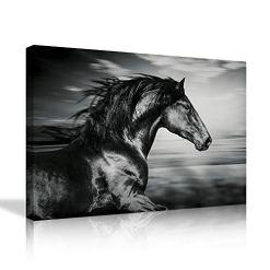 Black Horse Canvas Wall Art