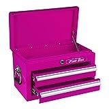 The Original Pink Box PB218MC 18-Inch 2-Drawer 18G Steel Mini Storage Chest w/ Lid Compartment, Pink