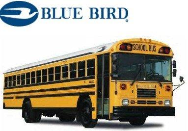 Image result for blue bird bus