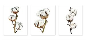 Floral wall art #A108 – Set of 3 (8×10) art prints.Watercolor cotton flower painting. Floral art. Cotton branch posters…