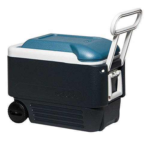 Igloo MaxCold Roller Cooler, Jet Carbon/Ice Blue/White, 40 Quart