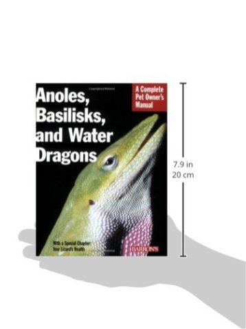 Anoles-Basilisks-and-Water-Dragons-Complete-Pet-Owners-Manual-Paperback--March-1-2008