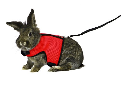 ASOCEA Adjustable Soft Harness with Stretchy Leash for Bunny Cat 1