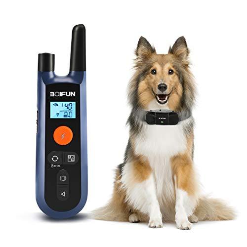 Dog Training Collar w/Remote
