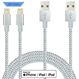 IDiSON iPhone Lightning Cable 10ft 2Pack Apple MFi Certified Braided Nylon Fast Charger Cable Compatible iPhone X XR XS MAX 8 Plus 7 6s 5s 5c Air iPad Mini iPod (Gray Silver)