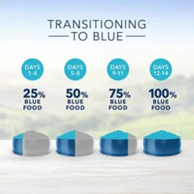 Blue-Buffalo-Sensitive-Stomach-Natural-Adult-Dry-Cat-Food
