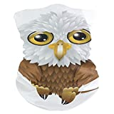Pingshoes Eagle Balaclava Womens Headband Scarf Mens Versatile Bandana, Muffler, Neck Gaiter, Magic, Hatliner Tube
