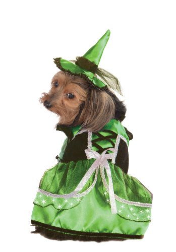 Rubie's Pet Costume, Large, LED Light-Up Green and White Witch Dress and Hat