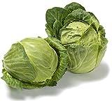 Copenhagen Market Early Premium Cabbage Seeds - 300 Heirloom Organic Seeds! - ON SALE! - (Isla's Garden Seeds) - Non GMO - 90% Germination! - Total Quality!