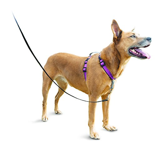 PetSafe 3in1 Harness, from The Makers of The Easy Walk Harness 1