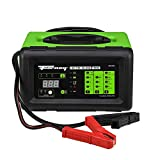 Forney black/green 52750 Battery Charger, 6 12-Volts at 2, 10, 20 and 100 Amps Start