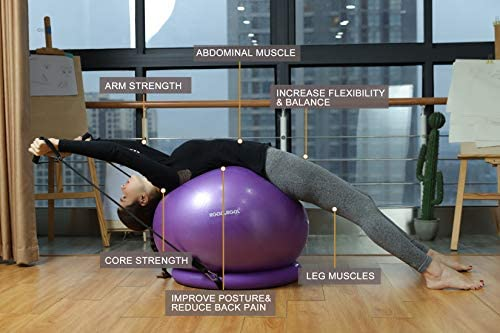 RGGD&RGGL Yoga Ball Chair, Exercise Ball with Leak-Proof Design, Stability Ring&2 Adjustable Resistance Bands for Any Fitness Level, 1.5 Times Thicker Swiss Ball for Home&Gym&Office&Pregnancy (65 cm) 8