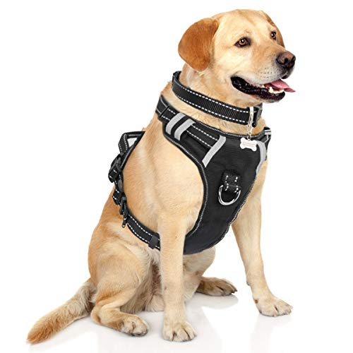 WINSEE Dog Harness No-Pull Pet Harness with Dog Collar & Front/Back Leash Clips Reflective Oxford Material Easy Control Adjustable Harness Black for Medium Large Dogs (Dog Collar Included) 1