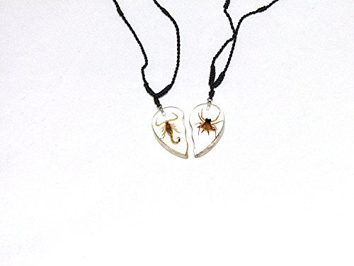 REAL Scorpion & Spiny Spider Adjustable Necklaces (Both Necklaces Together Make A Heart)