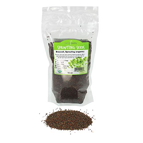 Organic Broccoli Sprouting Seeds By Handy Pantry | 1 Pound Resealable Bag| | Non-GMO Broccoli Sprouts Seeds, Contain Sulforaphane