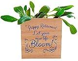 Happy Retirement Plant Pot Wooden Cube Planter...