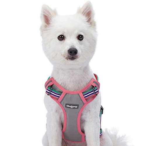 Blueberry Pet 9 Colors Soft & Comfy 3M Reflective Multi-Colored Stripe Padded Dog Harness Vest, Chest Girth 22'-26.5', Neck 17.5'-26', Pink, Emerald & Orchid, Medium, Mesh Harnesses for Dogs