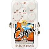 Electro Harmonix Canyon Delay...