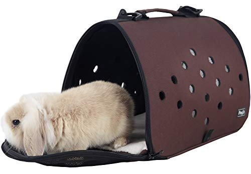 Petsfit Small Pet Carrier