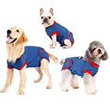 Recovery Suit for Dogs Cats After Surgery, Anti-Licking Male Female Dog Cone E-Collar Alternative Recovery Shirt Breathable Pet Surgical Recovery Snuggly Suit for Pet's Wounds, Bandages, Soft Fabric