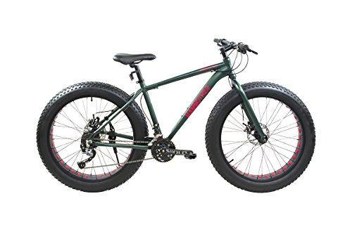 Alton Mammoth 2.0 Fat-Tire Bike Review