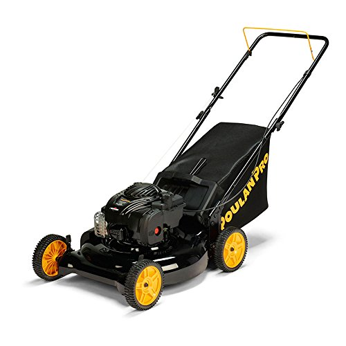 Top 10 Best Lawn Mowers Self Propelled Clearance Best Of