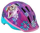 Paw Patrol Skye Toddler Helmet