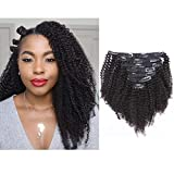 Afro Kinky Curly Clip in Human Remy Hair Extensions 3C 4A 4B Brazilian Curly Hair Clips in Hair Extensions 8A Virgin Thick Natural Black Color Clip on For Black Women (10 inch, Afro Kinky Curly)