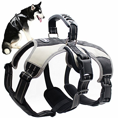 Mihachi Secure Dog Harness - Escape-Proof Reflective Dogs Vest with Lift Handle for Training Outdoor Adventures 1