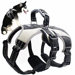 Mihachi Secure Dog Harness – Escape-Proof Reflective Dogs Vest with Lift Handle for Training Outdoor Adventures