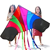"Tomi Kite - Huge Rainbow Kite - Ideal for Kids & Adults - Easy to Launch in Stiff Wind Or Soft Breeze - 60"" Wide - 100 Meter String - 6 Tails - Built to Last - Great for Family Fun"
