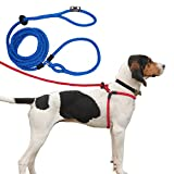 Harness Lead Escape Proof, Reduces Pull Dog Harness, Medium/Large, Blue