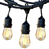Brightech Ambience Pro - Waterproof LED Outdoor String Lights - Hanging, Dimmable 2W Vintage Edison Bulbs - 48 Ft Commercial Grade Patio Lights Create Cafe Ambience in Your Backyard- Warm White