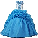 Product review for ANTS Women's Formal Ball Gown Quinceanera Dresses Long Prom Dress