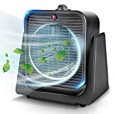 TRUSTECH Air Circulator Fan 2 in 1 Portable Quiet Cooling w/Space Heater for All Year Around, Tip Over & Overheat Protection, Personal Small Floor Desk Office Home Whole Room, Black