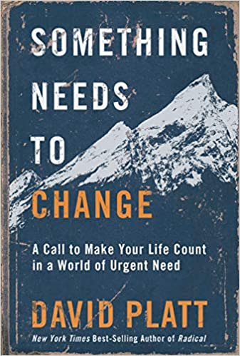 Something Needs to Change book cover