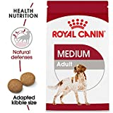 ROYAL CANIN SIZE HEALTH NUTRITION MEDIUM Adult dry dog food, 30-Pound