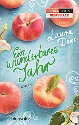 Laura Dave: Ein wunderbares Jahr